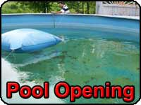 Swimming Pool Opening