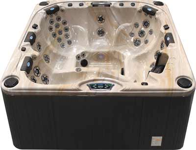 Cal Spas P-860L Platinum Series Hot Tub
