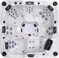 Cal Spas Platinum Series Hot Tubs P-880L