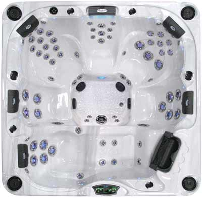 Cal Spas P-880L Platinum Series Hot Tub