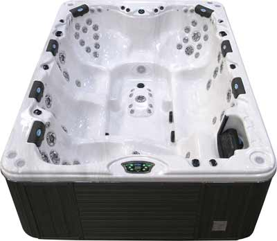 Cal Spas P-970N Platinum Series Hot Tub