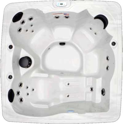 5 Person SIGNATURE SPAS - NSS-5 HOT TUB