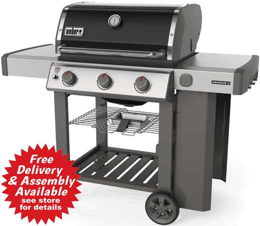 Weber Gas Grill - Genesis S 310 Grill