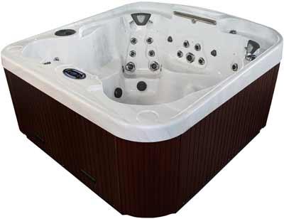 Coast Spas Radiance Curve Hot Tub